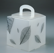 emballage translucide