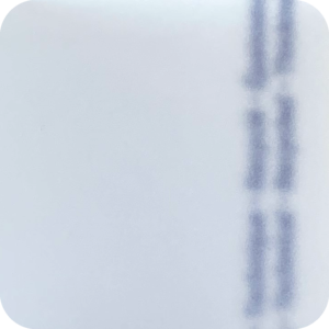Priplak - Technical - Izilyss 000